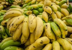 Beckworth_Bananas