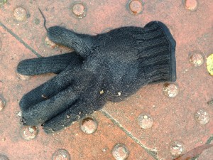 Beckworth_Glove