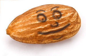 http://www.dreamstime.com/royalty-free-stock-image-almond-image12378816